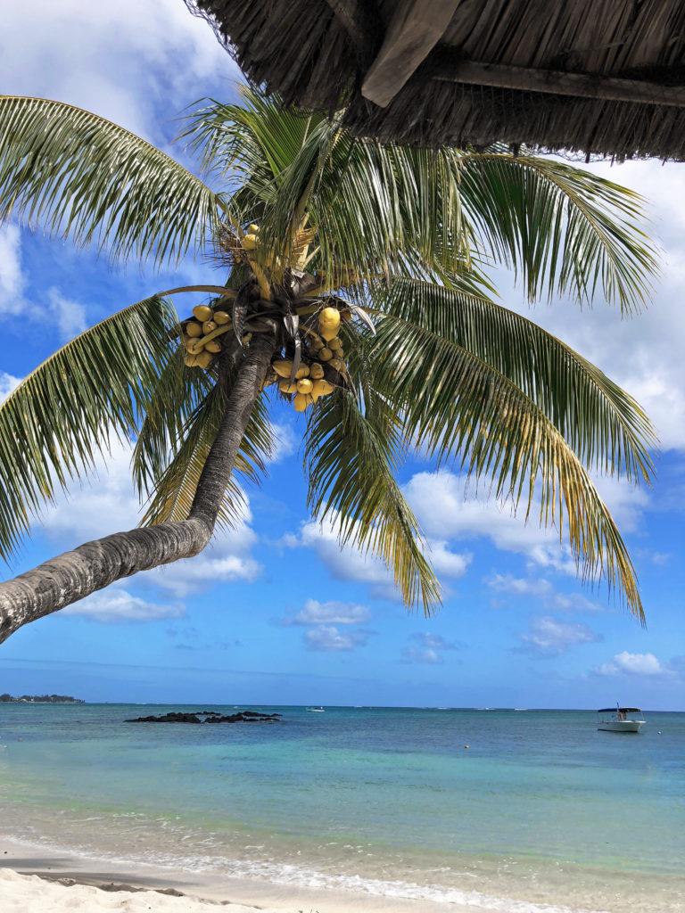flik and flak beach in mauritius