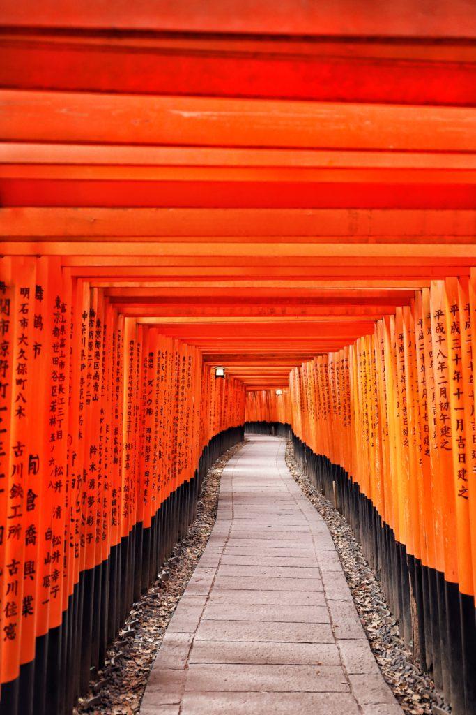 torii fushimi inari taisha
